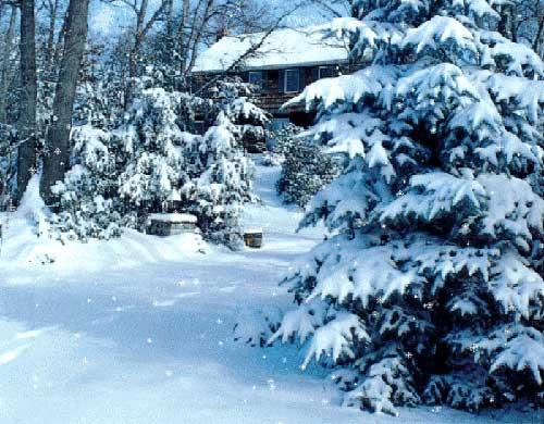 Snow Mzaar Lebanon