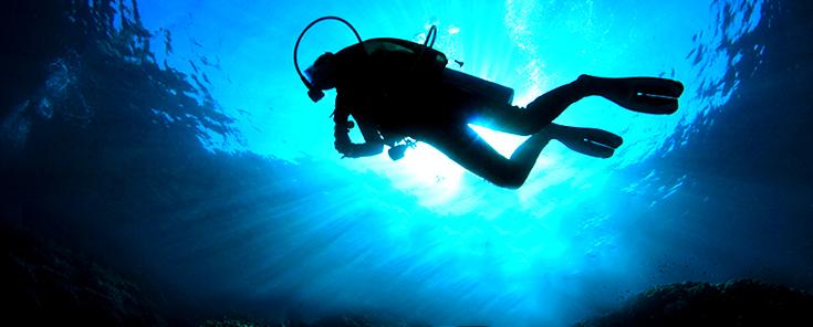 cape-town-diving-spots